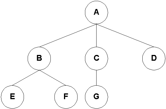 Rooted Tree of Degree 3